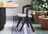 Miniforms Diverge Dining Chair